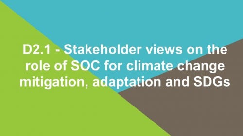 D2.1 - Stakeholder views on the role of SOC for climate change mitigation, adaptation and SDGs
