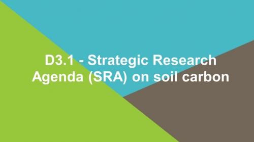 D3.1 - Strategic Research Agenda (SRA) on soil carbon